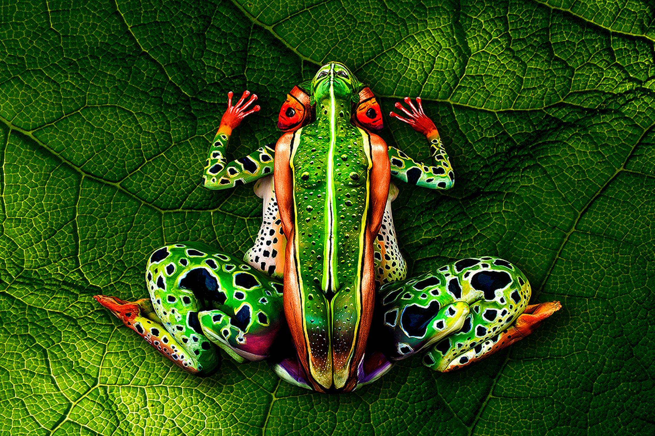 """The Frog"", A Bodypainting Masterpiece by Johannes Stötter"